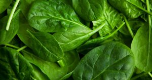 a bunch of fresh spinach