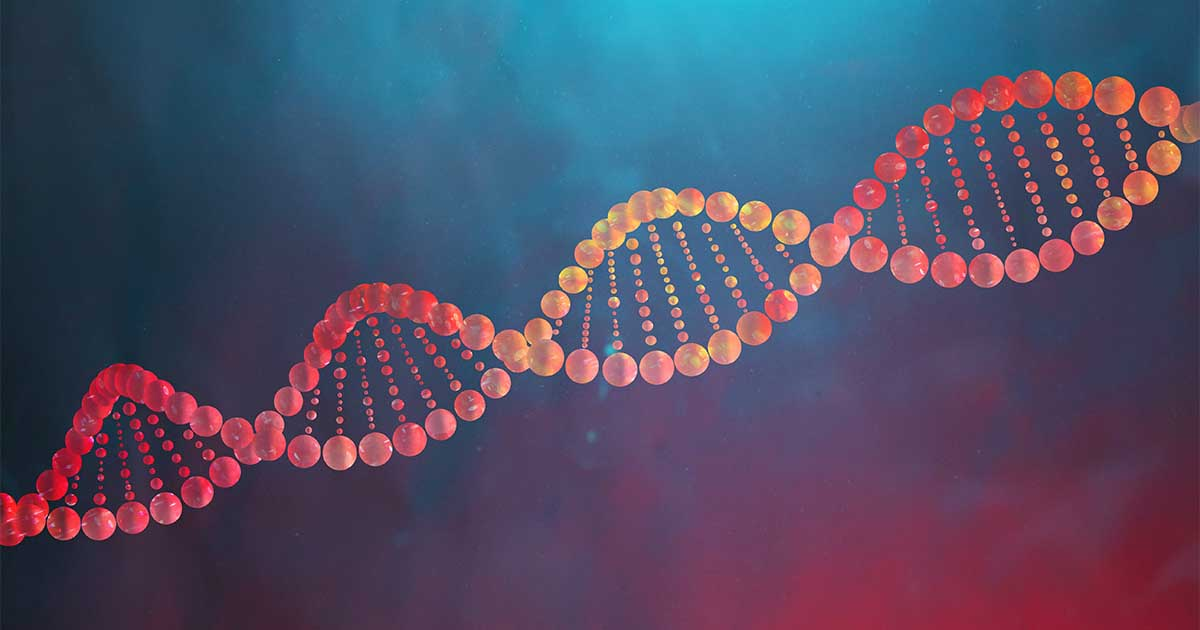 A yellow and red strand of DNA.